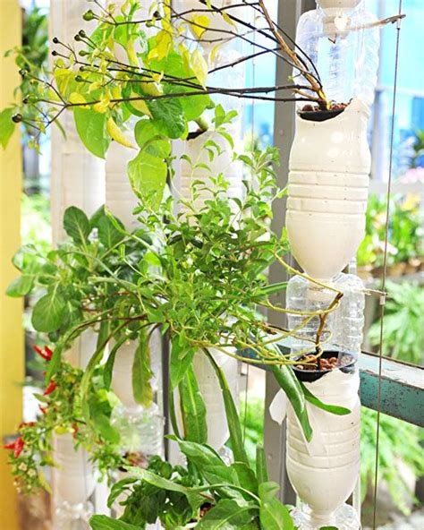 gardening hydroponics ã learn the amazing of growing fruits books 1000 images about bamboo hydroponics on home