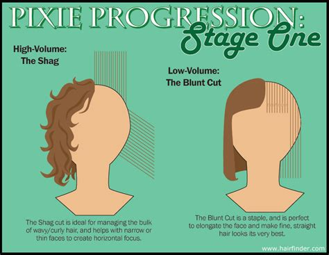 cutting diagrams for a shag cut diagram on how to cut a pixie newhairstylesformen2014 com