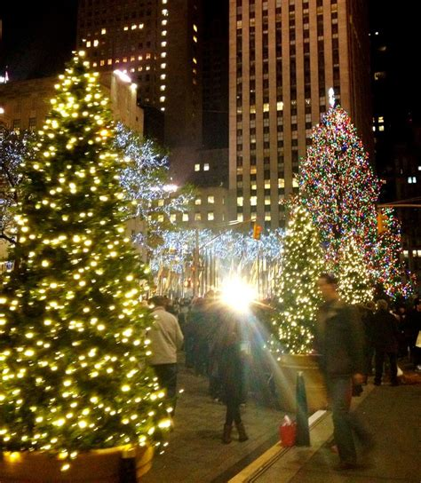 famous nyc christmas tree in 2012 favorite places