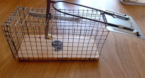 pi 232 ge 224 rat artisanal