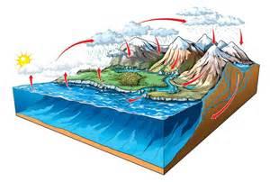 pourquoi parle t on de cycle de l eau dans la nature