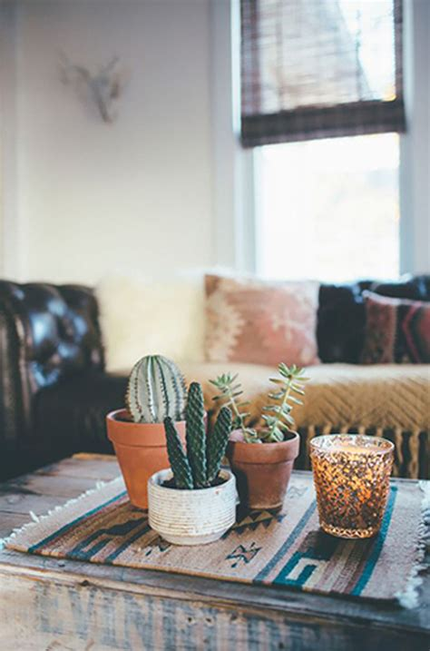 simple cactus ideas  beautify  room home