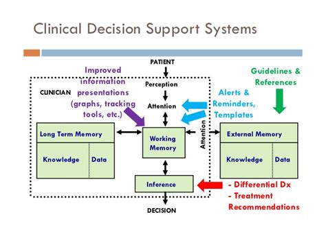 clinical decision support leveraging clinical it for dengue opportunities for tomorrow