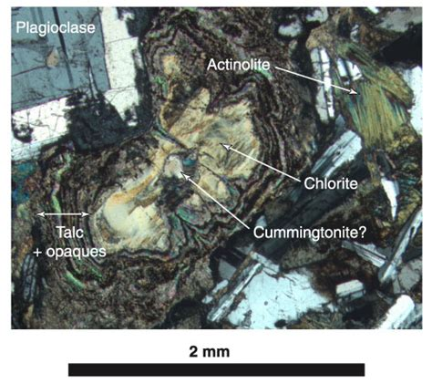actinolite in thin section figure f15