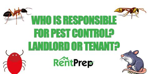 who is responsible for bed bugs landlord or tenant who is responsible for bed bugs landlord or tenant 28