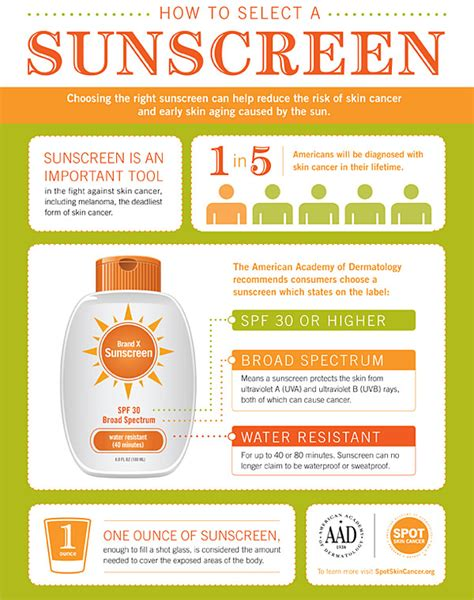 Sunscreen The Neccessity Of Summer by The Importance Of Applying Sunscreen
