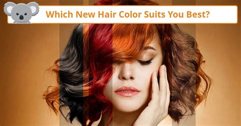 finding right haircolor quiz which new hair color suits you best koala quiz