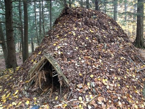 Rhody Survivalist: Shelter
