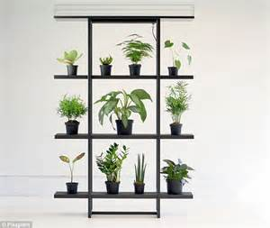 genius shelf automatically waters potted flowers so you