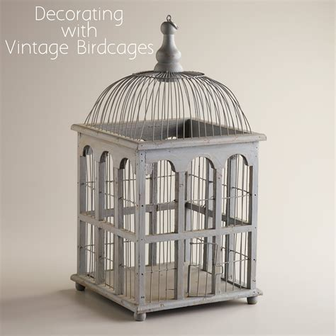 birdcages a decorative trend