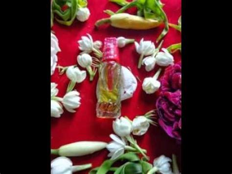 Minyak Jafaron minyak jafaron asli