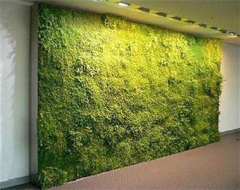 Imagenes Muros Verdes | muros verdes plantas e fotos decora 231 227 o e planejamento