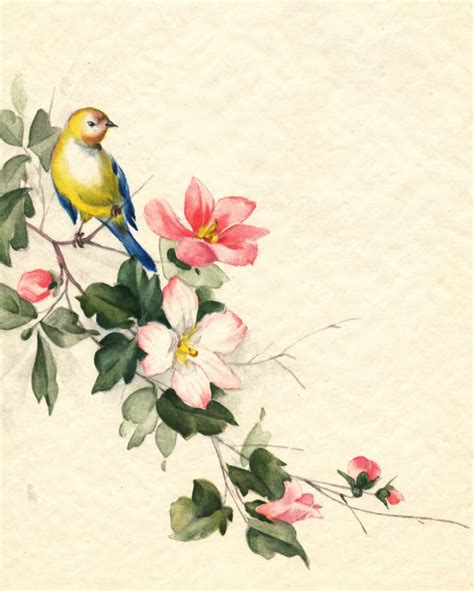 classic bird wallpaper collage candy bird images from vintage greeting cards