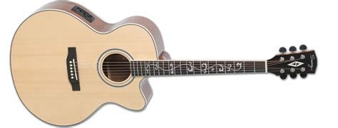 swing guitar swing guitars products 500 series 501j ce