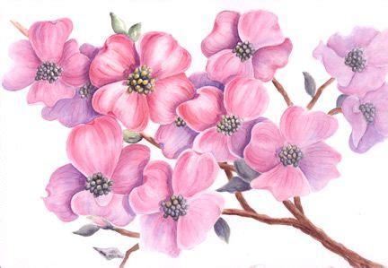 Blumen An Wand Malen 5202 by Bl 252 Ten Malen Mit Aquarellfarben Blumen Malen Ein