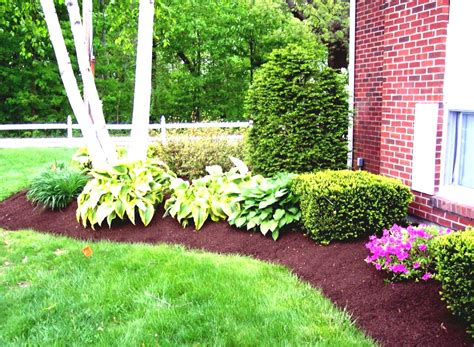 Simple Garden Landscaping Ideas Simple Tropical Landscaping Ideas On A Budget Goodhomez