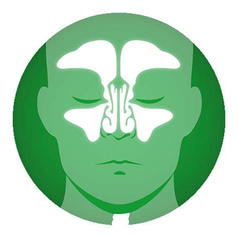 wann antibiotika bei sinusitis die sinusitis nasennebenh 246 hlenentz 252 ndung gelomyrtol 174 forte