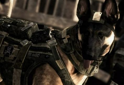 call puppy call of duty ghosts nemesis jeu xbox one images vid 233 os astuces et avis