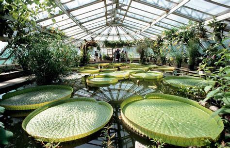 Garten Pflanzen Berlin by Berlin Der Botanische Garten Droht Finanziell