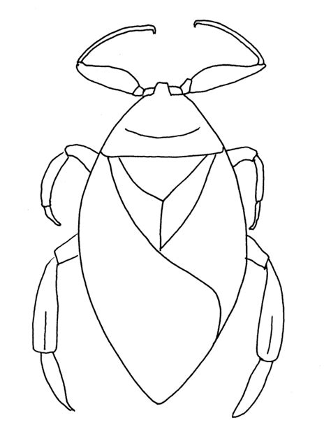 water bug coloring page environmental coloring sheets minnesota pollution