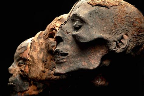 by mummy ancient egyptian mummy mask of a man pictures