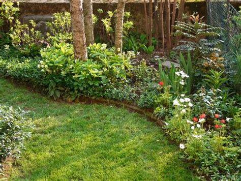 bordure perenni fiorite aiuola e bordura la scelta delle piante pollicegreen