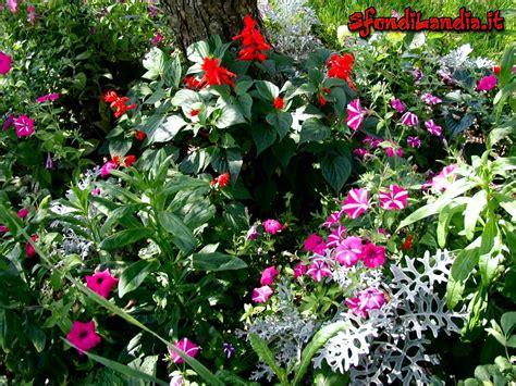 giardino in fiore sfondilandia it sfondo gratis di giardino in fiore per