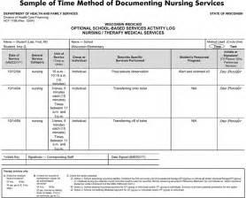 Programs sample nursing assignment nursing assignment sheet chart