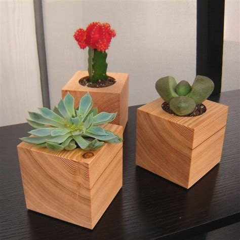 three succulent garden planters in reclaimed wood