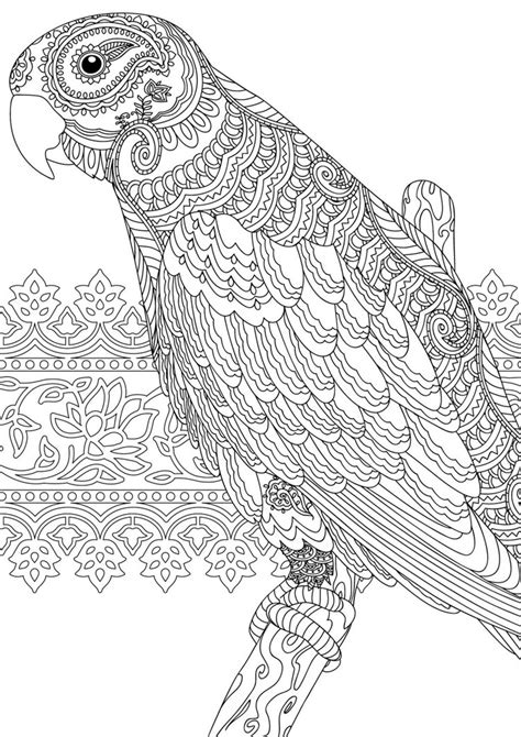 coloring pages for adults calming zentangle colouring page for redan s calm colour create