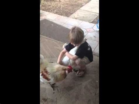 little boy hugs chicken pleated jeans