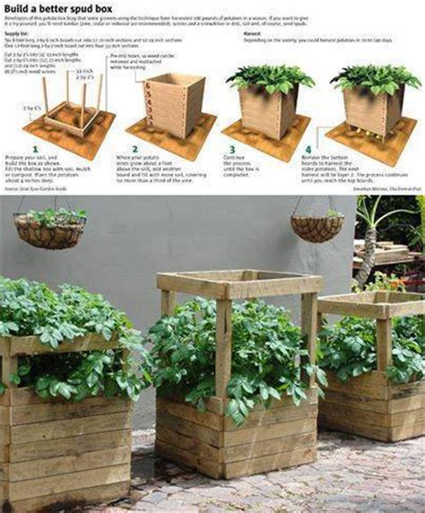 diy potato boxes that make growing potatos easy diy