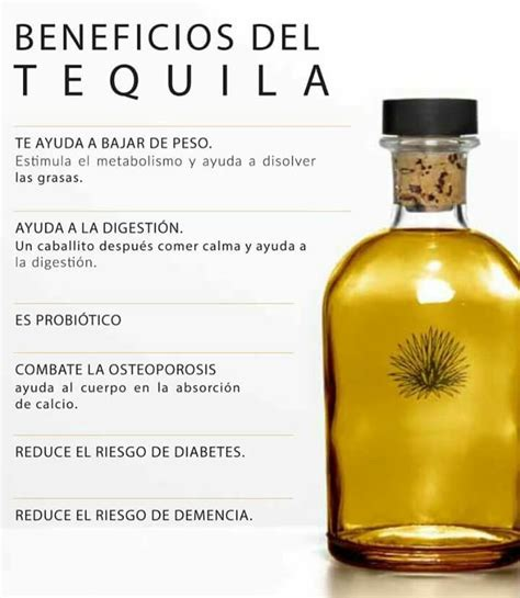 Tequila Memes - 151 best images about tequila memes on pinterest agaves