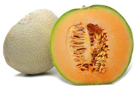 100btr melon orange aroma freshpoint melons cantaloupe
