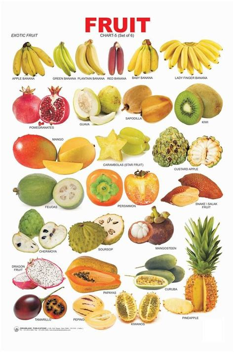 0 point fruits and vegetables 42 best how to cut fruits images on healthy