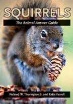 Elizabeth Still Misses Dead Chipmunk Nibbles by Reader S Block Books To Celebrate Squirrel Appreciation Day