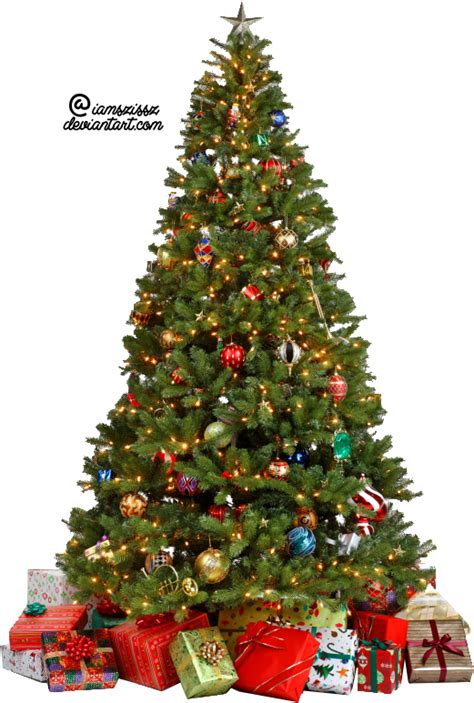 christmas tree transparent background png mart