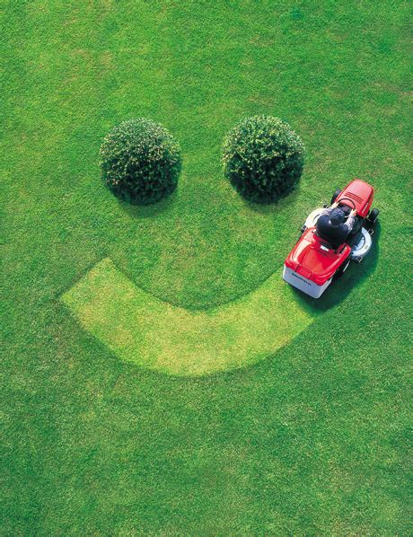 Lawn Care by A Few Other Lawn Care Tips Dallas Lawn Care
