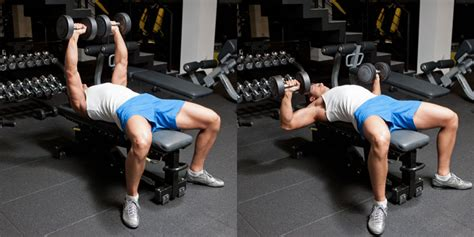 dumbbell chest press vs bench press dumbbell bench press weight training exercises 4 you