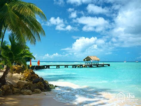 Find In And Tobago Tobago Plantations Rentals For Your Vacations With Iha