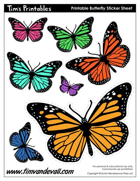 printable images of butterflies printable butterflies tim s printables