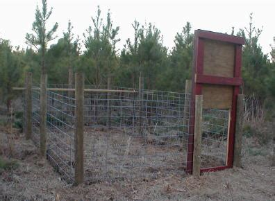swing door hog trap plans gate designs hog trap gate designs