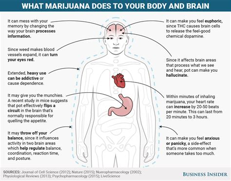 Does Tabacco Affect Thc Detox by Mental And Physical Effects Of Marijuana Business Insider
