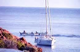 turistica il gabbiano il gabbiano yacht charter noleggio barche a vela con o