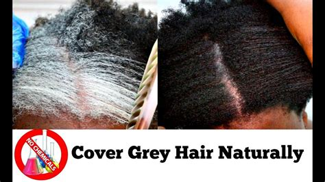 how to cover gray hair naturally for african americans how to turn white or grey hair into black naturally with