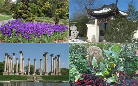 national arboretum dc gardens