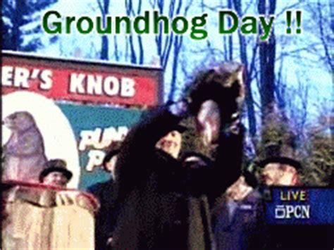 groundhog day gif groundhog day gifs find on giphy