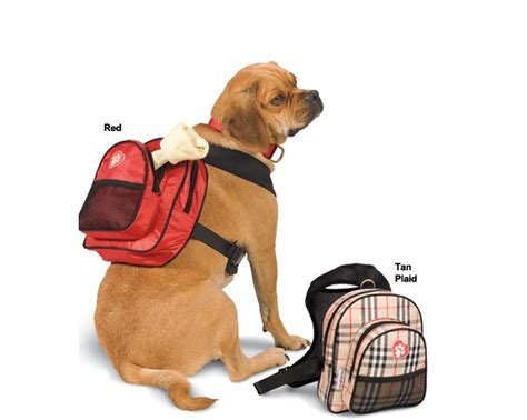 backpack for dogs to wear classyruff backpack barking bitches barking bitches