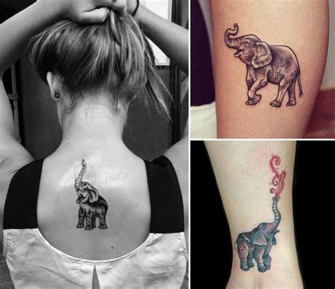 elephant tattoo with trunk up meaning go wild and crazy with these animal tattoos