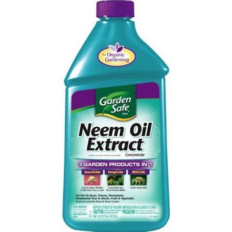 neem oil for bed bugs insect spray neem oil to make a quart of spray mix 1 1 2